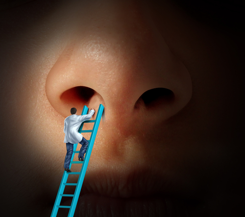 repairing nose